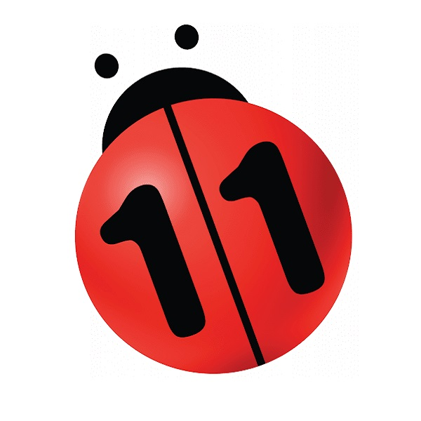 n11.com, 2021 yılında mağaza destek noktası sayısını artıracak.