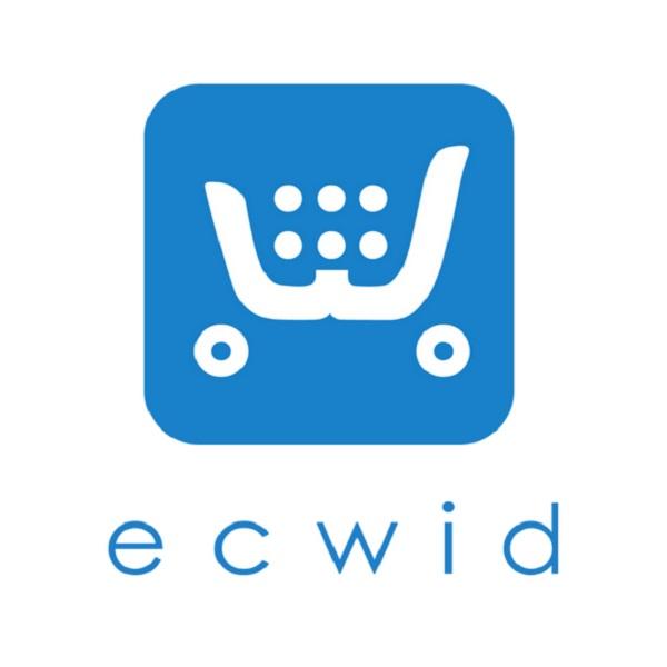 e-ticaret girişimi